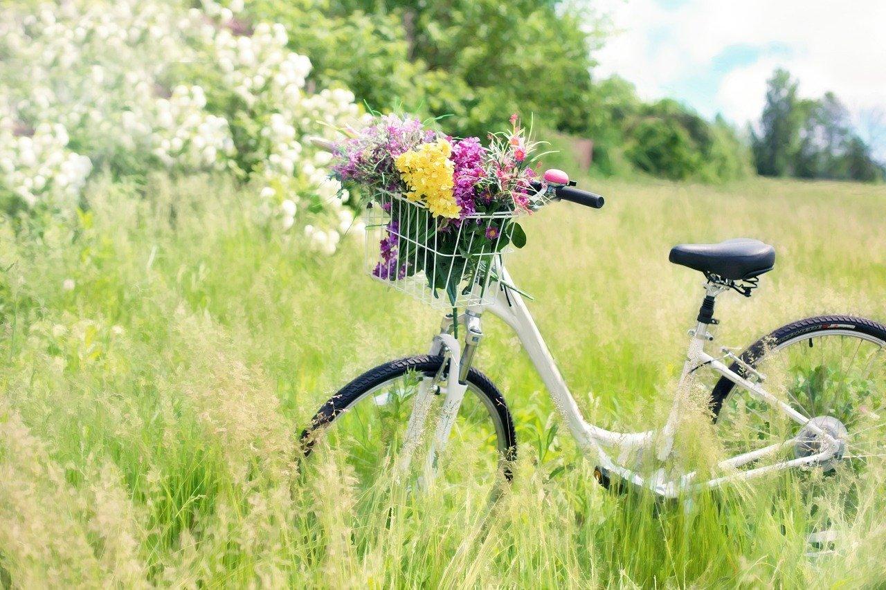 Bezpieczna jazda rowerem